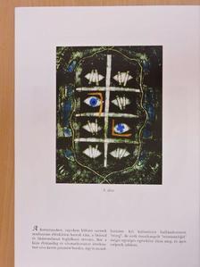 Kovács Bálint - Találkozások a művészettel [antikvár]