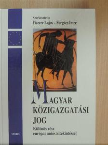 Baksa Sarolta - Magyar közigazgatási jog [antikvár]