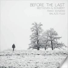 BEETHOVEN-SCHUBERT - BEFORE THE LAST CD FÜLEI