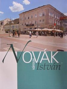 Bátyi Zoltán - Novák István városai [antikvár]