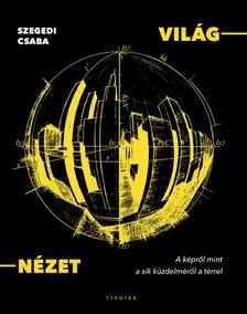 Szegedi Csaba - VILÁG-NÉZET - A képről mint a sík küzdelméről a térrel [eKönyv: pdf]