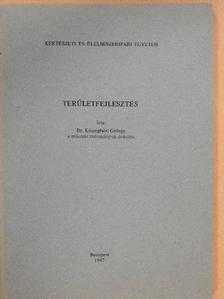 Dr. Kőszegfalvi György - Területfejlesztés [antikvár]