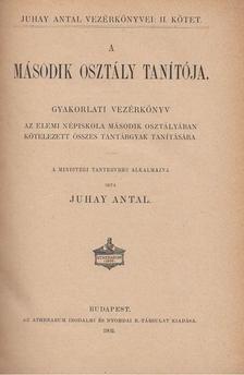 Juhay Antal - A második osztály tanítója [antikvár]