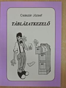 Császár József - Táblázatkezelő [antikvár]
