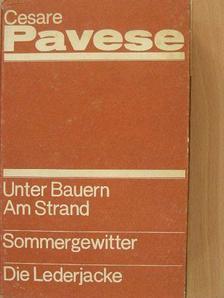 Cesare Pavese - Unter Bauern/Am Strand/Sommergewitter/Die Lederjacke I-III. [antikvár]