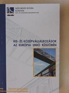 Barsi Boglárka - Kis- és középvállalkozások az Európai Unió küszöbén [antikvár]