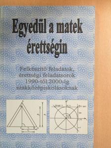 Kovács Ágnes - Egyedül a matek érettségin - Felkészítő feladatok, érettségi feladatsorok 1990-től 2000-ig szakközépiskolásoknak [antikvár]