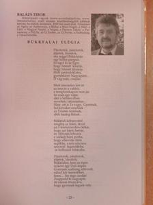 Almássy Katinka - Arcok és énekek 2013 [antikvár]