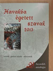 Balázs Tibor - Havakba égetett szavak 2013 [antikvár]