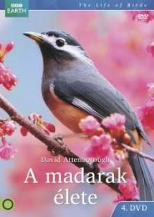 David Attenborough - A madarak élete 4. BBC - DVD
