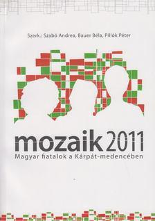 Szabó Andrea szerk., Bauer Béla (szerk.), Pillók Péter szerk. - Mozaik 2011 - Magyar fiatalok a Kárpát-medencében [antikvár]