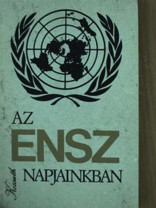 Bokorné Szegő Hanna - Az ENSZ napjainkban [antikvár]