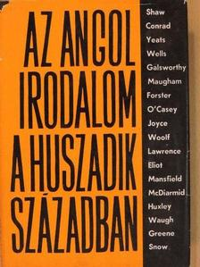 Hernádi Miklós - Az angol irodalom a huszadik században II. [antikvár]