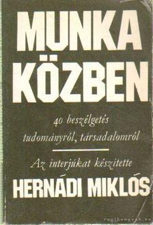 Hernádi Miklós - Munka közben [antikvár]