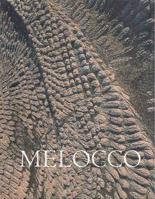 Wehner Tibor - Melocco Miklós [antikvár]