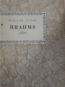 Molnár Antal - Johannes Brahms [antikvár]