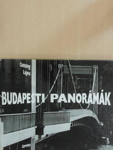 Bajor Nagy Ernő - Budapesti panorámák [antikvár]