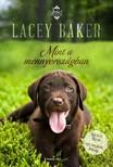 Lacey Baker - Mint a mennyországban [eKönyv: epub, mobi]