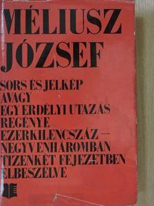 Méliusz József - Sors és jelkép [antikvár]