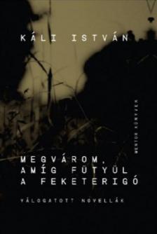 Káli István - Megvárom, amíg fütyül a feketerigó - ÜKH 2017