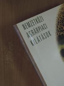 Hingyi Hajnalka - Nemzetközi agrárpiaci kilátások 2004 [antikvár]