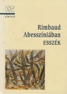 Dobai Péter - Rimbaud Abesszíniában [antikvár]