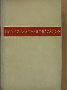 Áprily Lajos - Tavasz Magyarországon [antikvár]