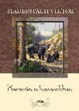 Maderspach Viktor - Karaván a havasokban