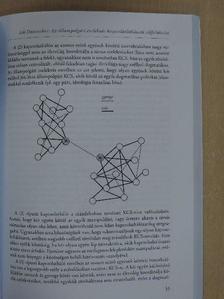 Babócsai Zsuzsa - Közösségi relációk: elméletek, narratívák, hipotézisek [antikvár]