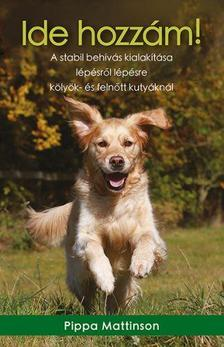 Pippa Mattinson - Ide hozzám! / A stabil behívás kialakítása lépésről lépésre kölyök- és felnőtt kutyáknál