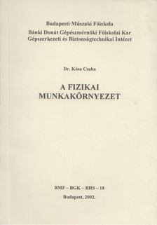 Kósa Csaba - A fizikai munkakörnyezet [antikvár]