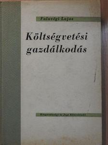 Faluvégi Lajos - Költségvetési gazdálkodás [antikvár]
