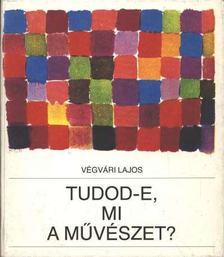 Végvári Lajos - Tudod-e, mi a művészet? [antikvár]