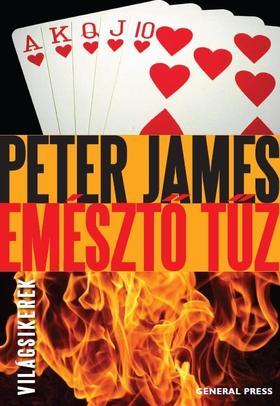 Peter James - Emésztő tűz