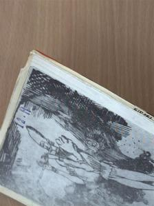 André Breton - Irodalmi Szemle 1973. szeptember [antikvár]