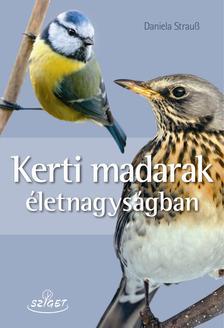 Daniela Strauß - Kerti madarak életnagyságban