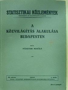 Pásztor Mihály - A közvilágítás alakulása Budapesten [antikvár]
