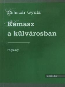 Császár Gyula - Kamasz a külvárosban [antikvár]