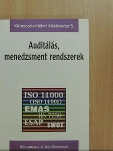 Kósi Kálmán - Auditálás, menedzsment rendszerek [antikvár]