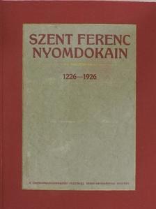 Bölcskev Ödön - Szent Ferenc nyomdokain [antikvár]