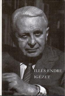 Illés Endre - Igézet [antikvár]