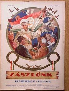 Ajtai Kálmán - Zászlónk 1933-1934. (nem teljes évfolyam) [antikvár]