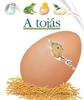 A tojás - Kis felfedező zsebkönyvek