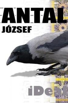 Antal József - iDeal [eKönyv: epub, mobi]