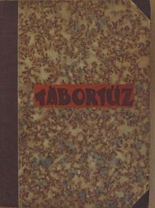 Dr. Borka Géza - Tábortűz 1931. szeptember-1932. június [antikvár]