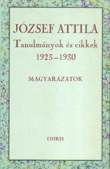 Tverdota György - Tanulmányok és cikkek 1923-1930 - Magyarázatok [antikvár]