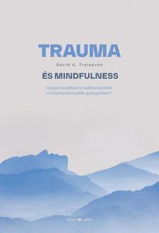 David A. Treleaven - Trauma és mindfulness - Hogyan segítheti a tudatos jelenlét a traumával küzdők gyógyulását?