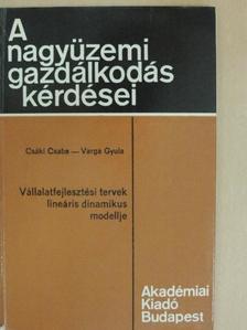 Dr. Csáki Csaba - Vállalatfejlesztési tervek lineáris dinamikus modellje [antikvár]