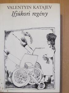 Valentyin Katajev - Ifjúkori regény [antikvár]