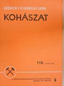 Dr. Hauszner Ernő - Bányászati és Kohászati Lapok - Kohászat 1985. június [antikvár]